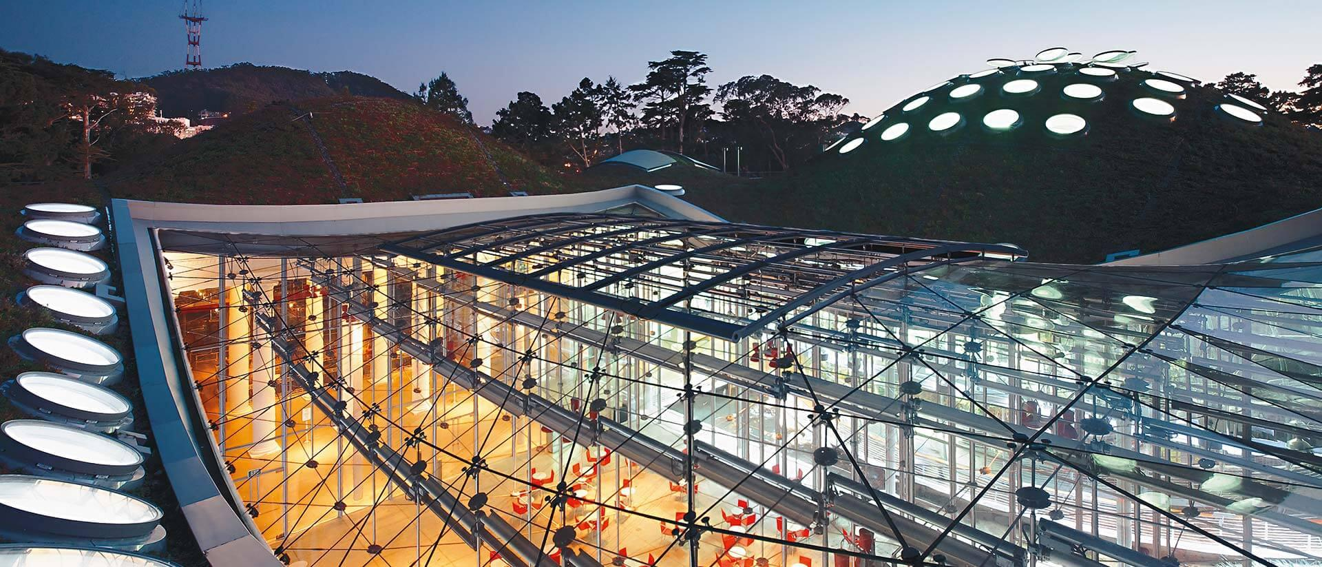 California Academy of Sciences Project Cover